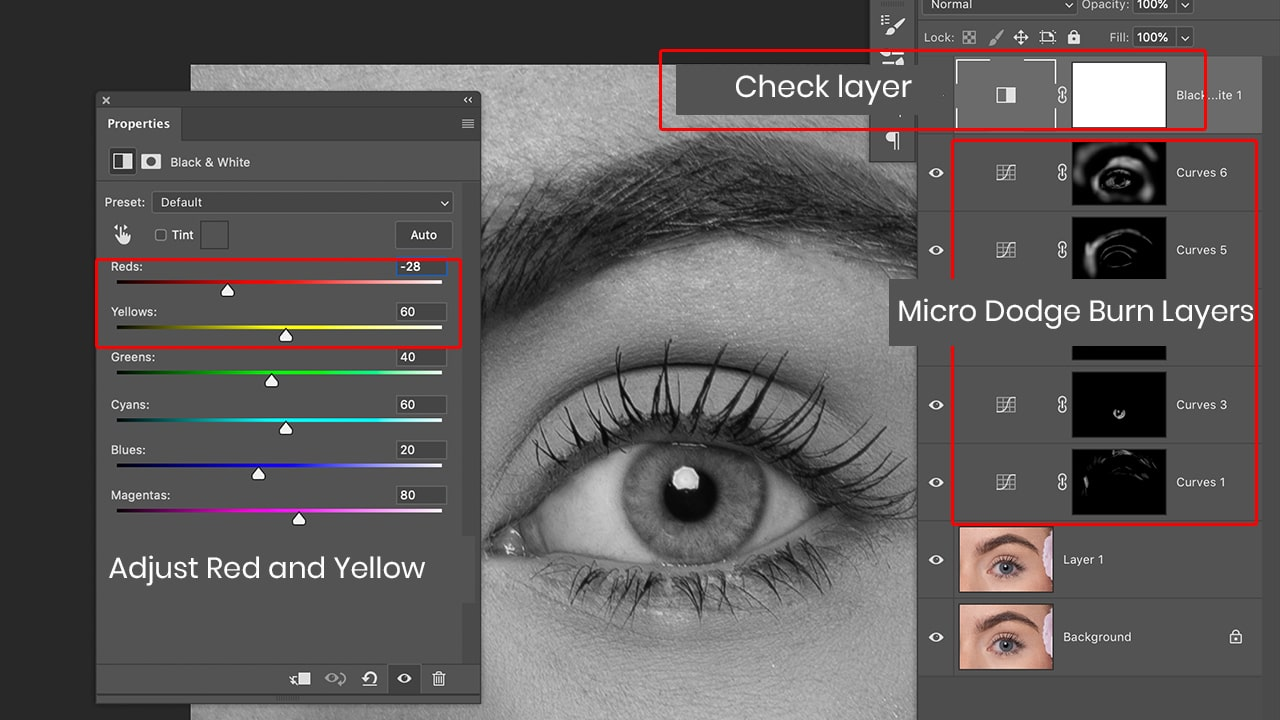 photoshop adjustment layer for eyebrow shaping