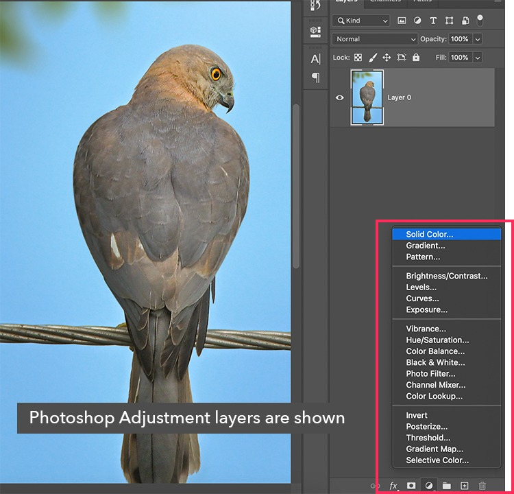 adjustment layers are used in photo manipulation