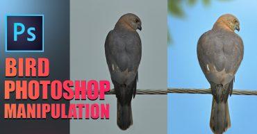 Photo manipulation photoshop tutorial